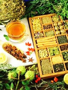گیاهان دارویی